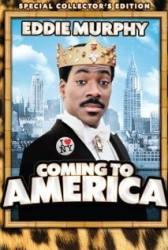 Todas as músicas do filme um principe em nova york